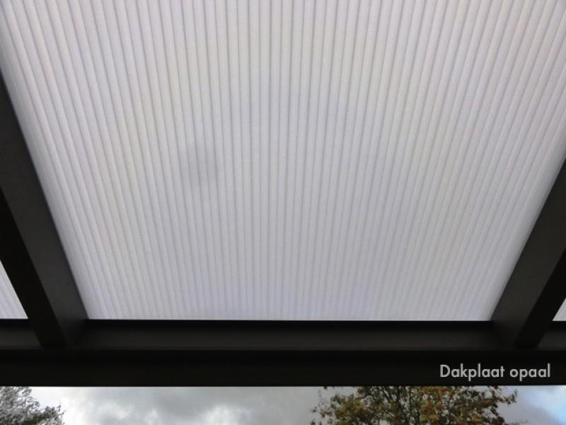 Dach-Blatt  Opal